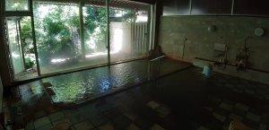 新緑を眺めながらの温泉…サイコーですね!!